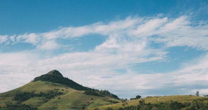 L'écologie, nouvel horizon de l'Église