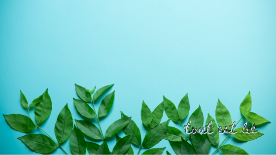 « Demeurez dans mon amour » Jean 15,9